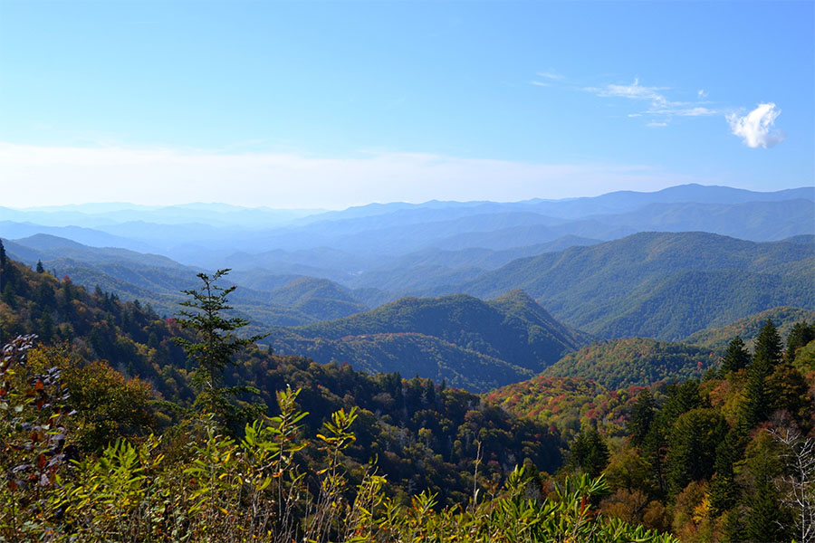 Blog - View of the Appalachian Mountains Against a Clear Blue Sky in North Carolina with Colorful Fall Foliage